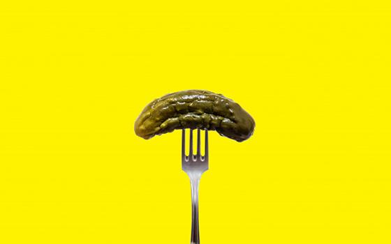 Helexo Pickle
